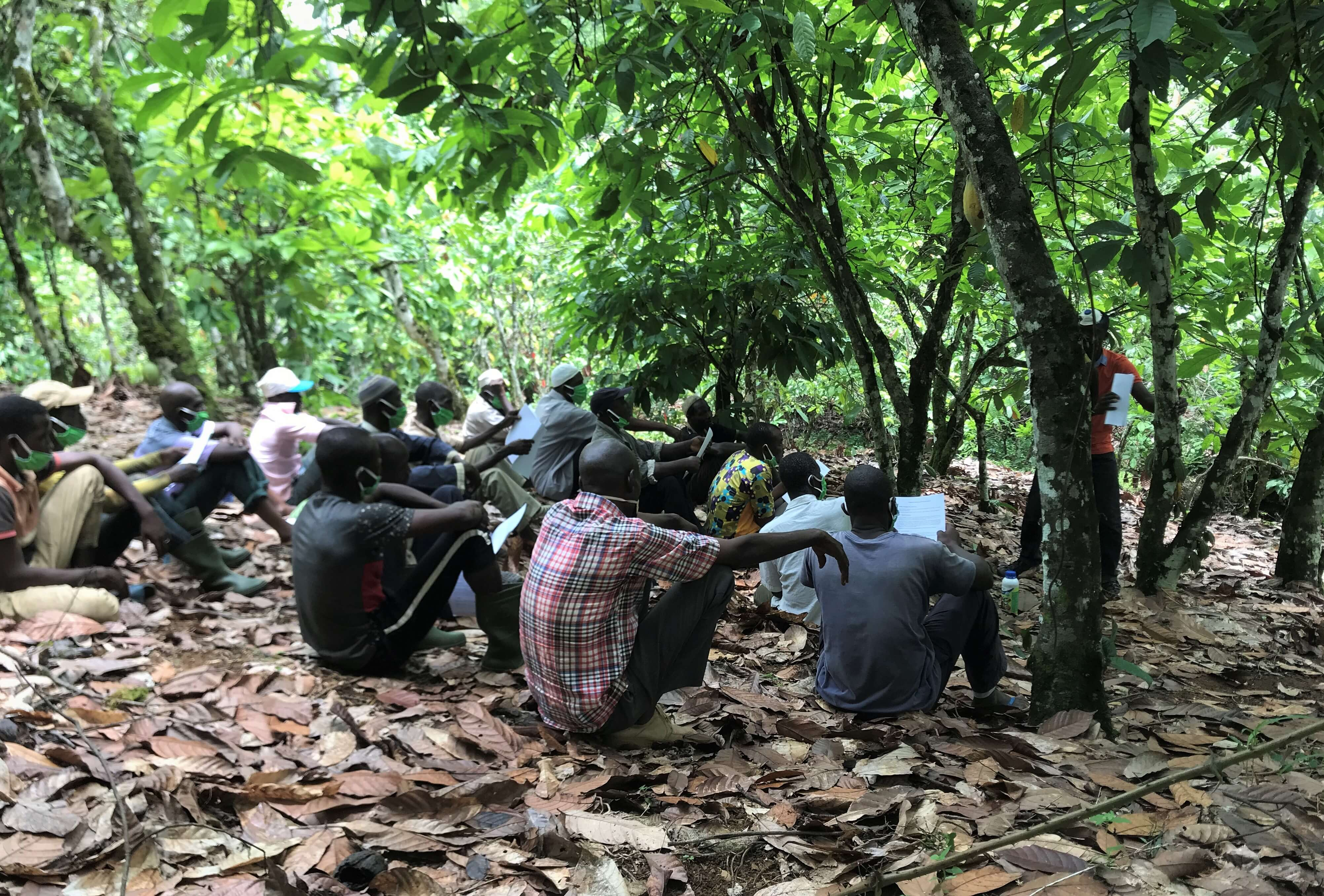 uirec formation covid cacao agroecologie